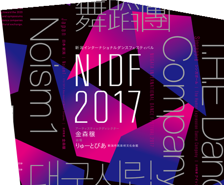 T.H.E-Website-Homepage-NIDF2017