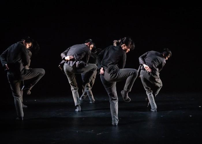 T H E DANCE COMPANY
