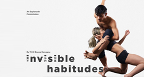 invisiblehabitudes